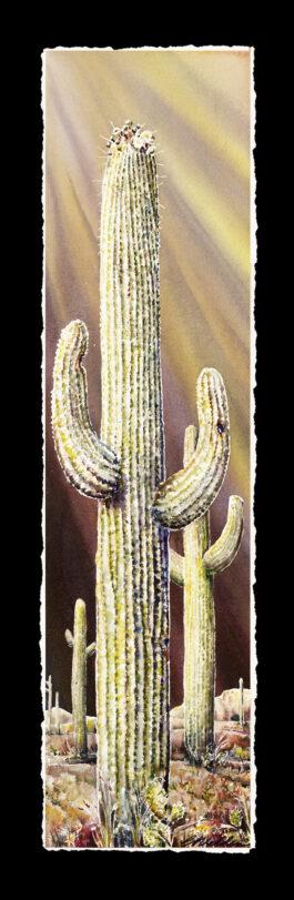 Easter Saguaros