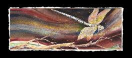 Alighting (Dragonfly 1)