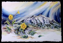 Girasol (Mt. Sopris)
