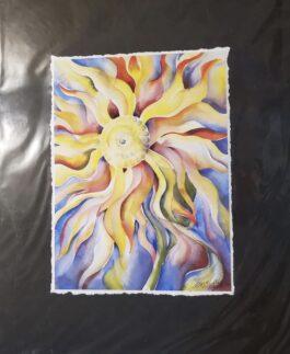 Sunshine Flower at Play