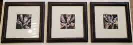 """Iris Dance Trio"" Framed Giclee Print Set"