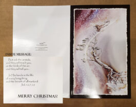 10 HOPE Christmas Cards (Golden Eagle and Christmas Tree)