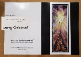 10 Star of Bethlehem Christmas Cards