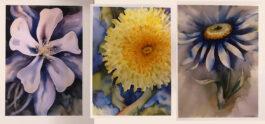 Set of 3 wildflower giclee artist proofs 5 X 7″